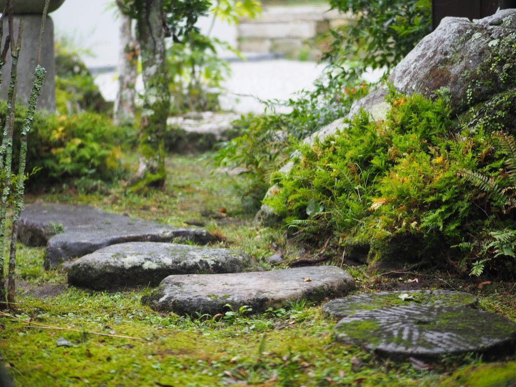 furuhashi_garden
