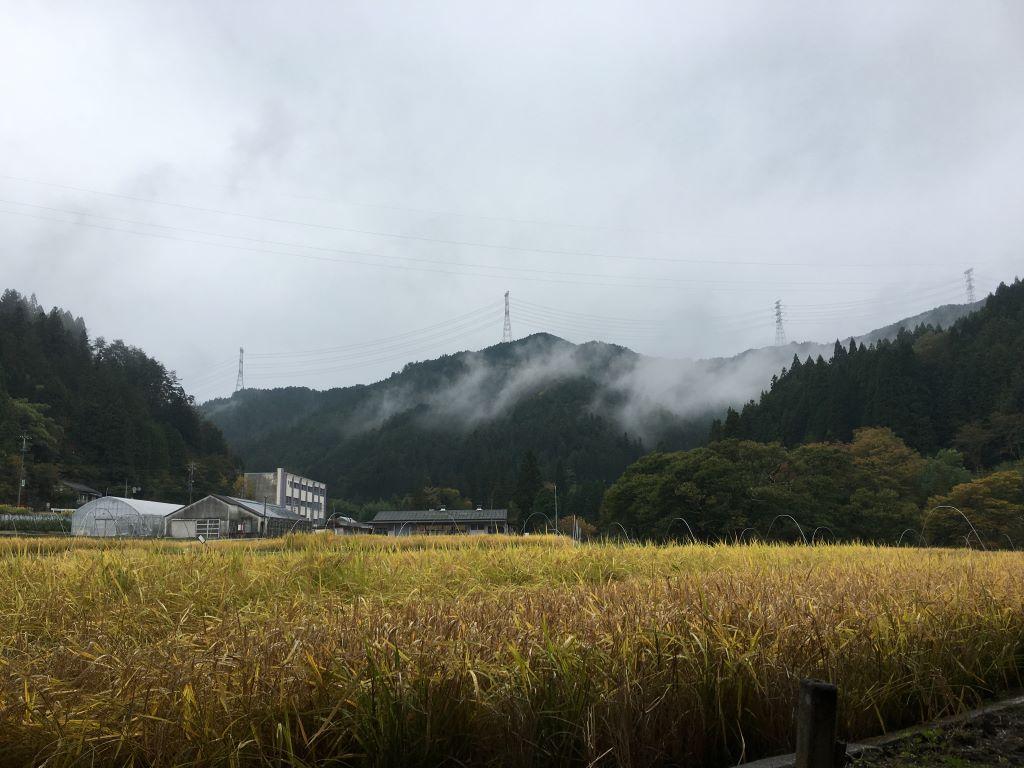 inabu_landscape3